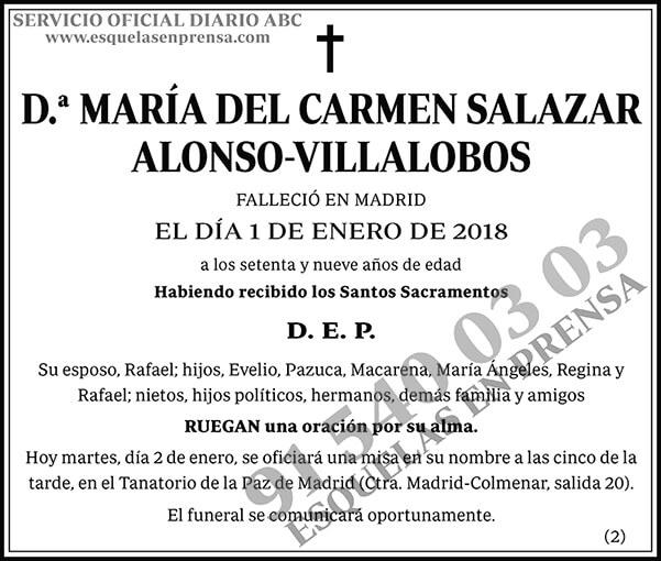 María del Carmen Salazar Alonso-Villalobos